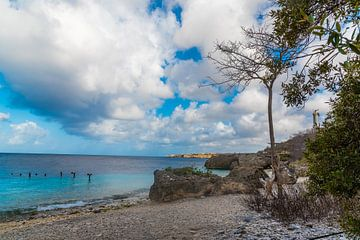 Prachtig strand in Curacao van Joke Van Eeghem