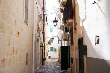 Street in Monopoli, Italy van