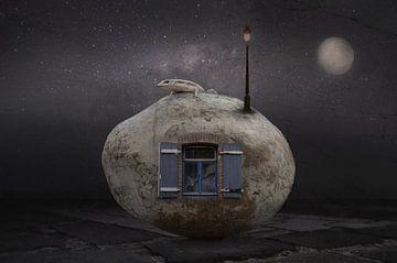 Maison en pierre, Muriel Vekemans sur 1x