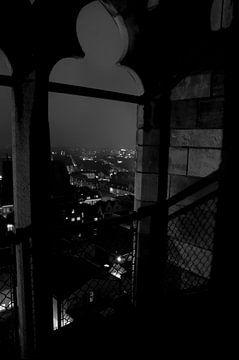 Nacht op de Domtoren van Maurice Moeliker