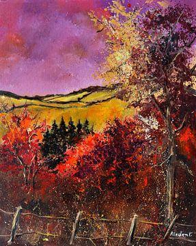 Herfst in de Ardennen van pol ledent