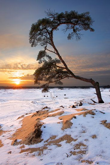 Sneeuw en zand