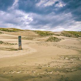 Kustlijn met het Noordzeestrand en het duinlandschap van eric van der eijk