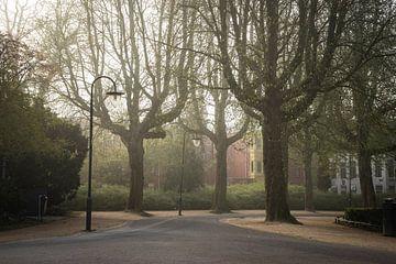 Noorderplantsoen Groningen, Kruissingel | Mistige ochtend bij de plantsoenvijver van Hessel de Jong