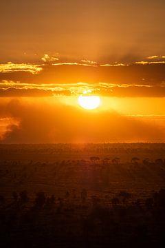 Zonsondergang in Kenia 2 van