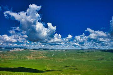 Landschap in Mongolië van Bart Nikkels