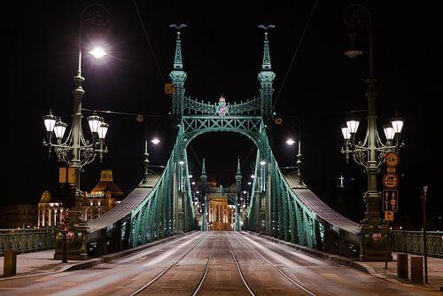 Freiheitsbrücke von Paul Oosterlaak
