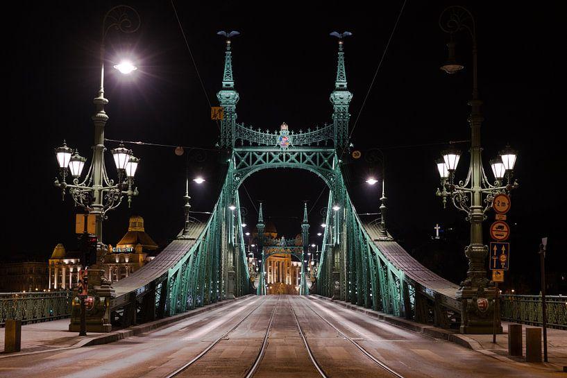 Vrijheidsbrug van Paul Oosterlaak