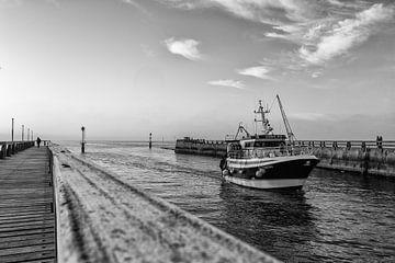 Veilig naar de haven van Patrick Lauwers