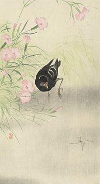 Moorhuhn an der blühenden Pflanze von Ohara Koson