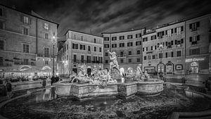 Rome - Fontana del Nettuno - Piazza Navona van