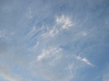 Windwolken von Letty van Dijk