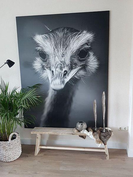 Klantfoto: Emoe in zwart-wit van Fotografie Jeronimo, op canvas