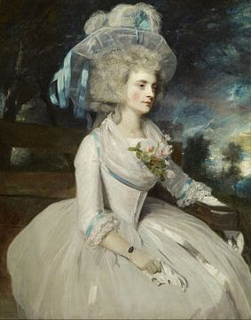 Porträt von Lady Skipwith - Reynolds, Joshua Reynolds