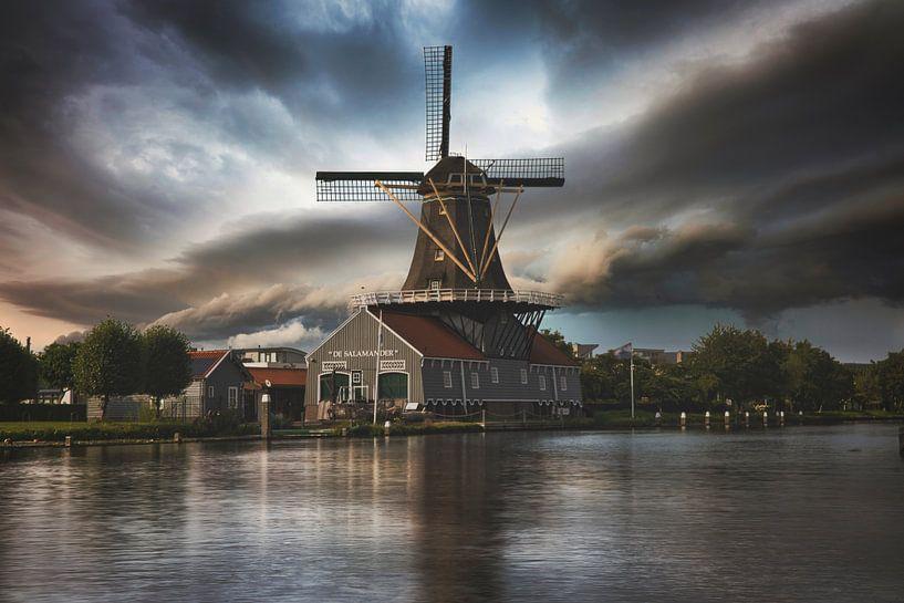 Le Moulin de la Salamandre Leidschendam sur Chris Koekenberg