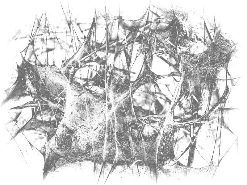 Caterpillar 2 van Jon Houkes