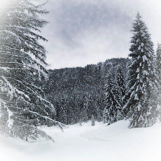 Bavarian Winter's Tale VI van Melanie Viola