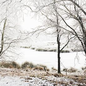 winterlandschap van Petra Terpstra