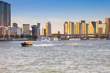 De Skyline van Rotterdam van Petra Brouwer