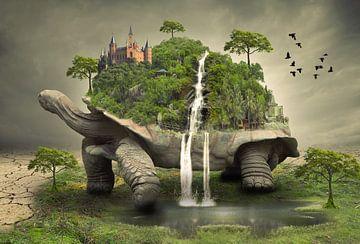 De wereld op de rug van een schildpad van Bert Hooijer
