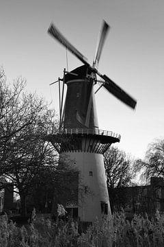 Mühle De Drie Koornbloemen in Schiedam von Rob Pols