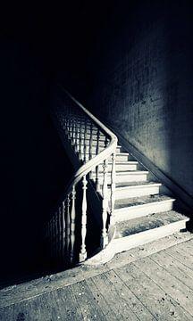 Choose your Path 3 van Kirsten Scholten