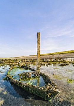 Haven van Sil Texel van Texel360Fotografie Richard Heerschap