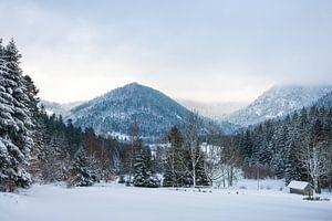 Winters uitzicht over de Vogezen