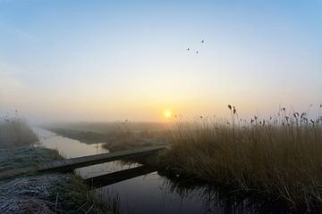 Zonsopkomst in Vockestaert sur Remco Van Daalen