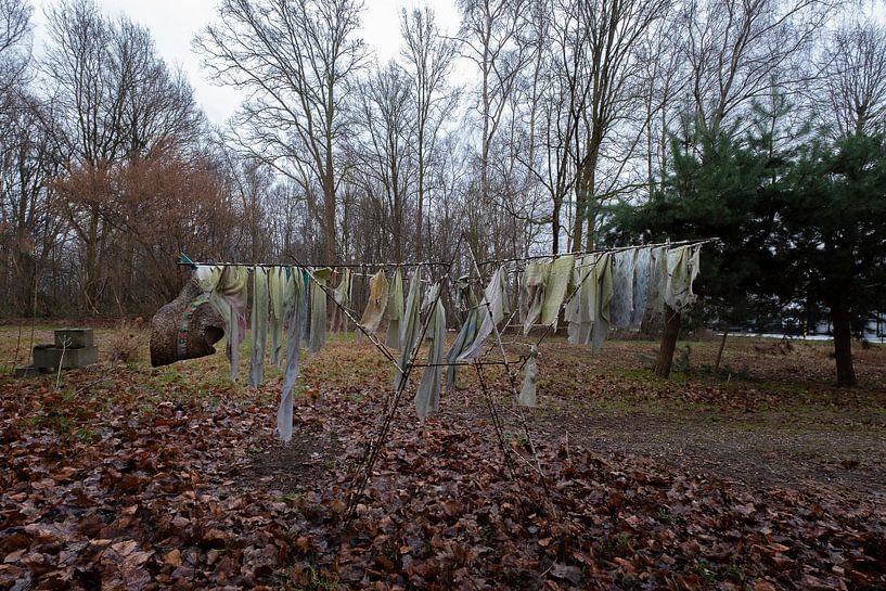 Het vergeten wasgoed von Truus Nijland
