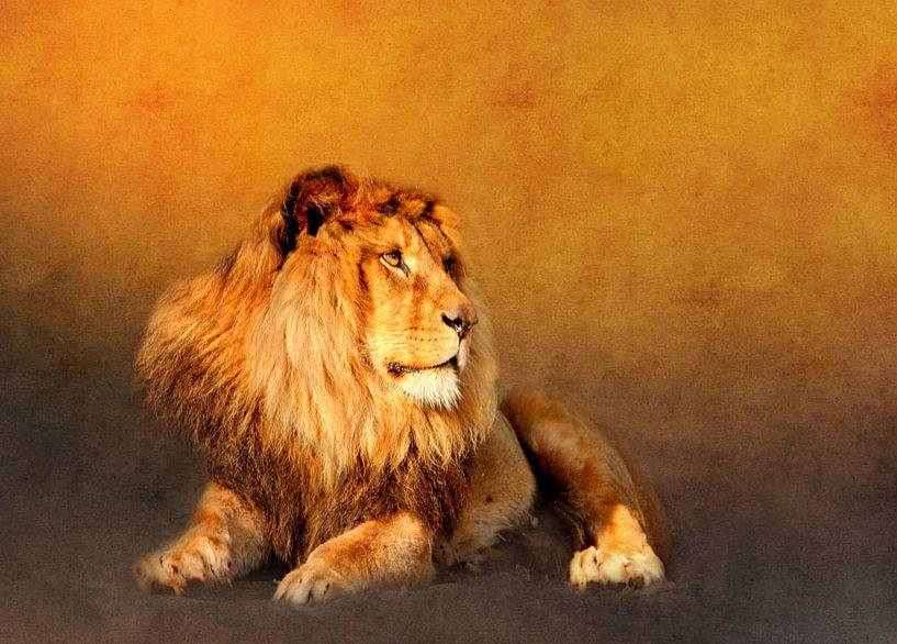 König der Löwen van Heike Hultsch