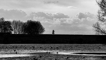 Cycliste solitaire sur la digue