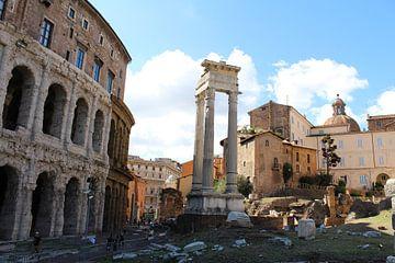 Ruïnes Rome van Martin van den Berg Mandy Steehouwer