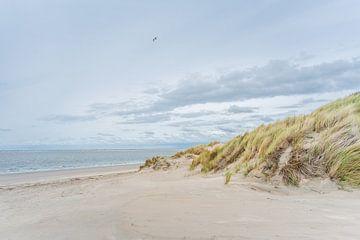 Strand en duinen van Ouddorp van Anita Kabbedijk