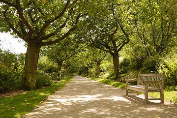 Herhaling van banken en bomen I Jardins de Valloires I Picardië, Frankrijk I Kleurenprint van Floris Trapman