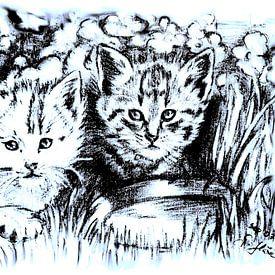 Baby Cats In Blue And White van Gitta Gläser