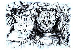 Baby Cats In Blue And White von Gitta Gläser