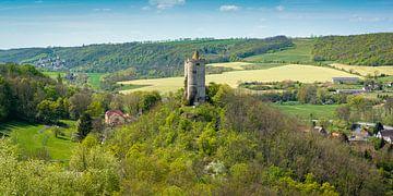 Burg Saaleck in Bad Kösen von Martin Wasilewski