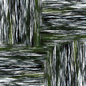linear forrest (05w)