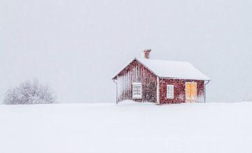 Winter in Zweden von Hamperium Photography