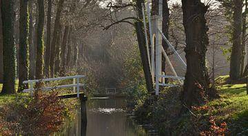 Landgoed Overcinge te Havelte (Drenthe) van Henk Mulder