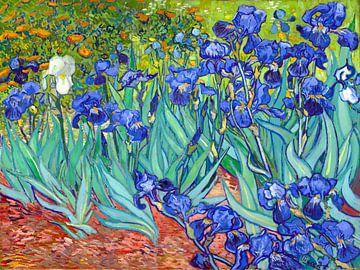 Irissen - Vincent van Gogh - 1889 van Jan Willem van Doesburg
