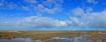 Noord Friesland Buitendijks van