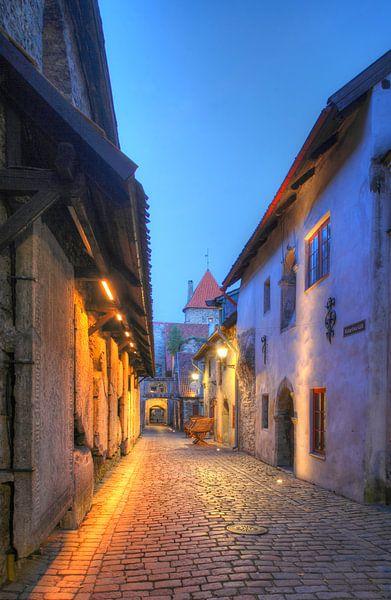 St. Katharinenpassage, Unterstadt, Altstadt ,  Tallinn, Estland, Europa von Torsten Krüger