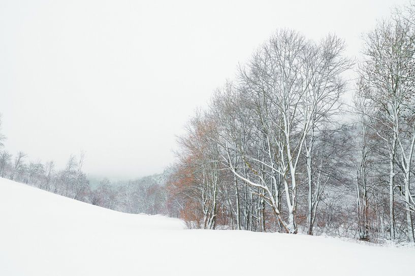 Winterwanderung von Max Schiefele