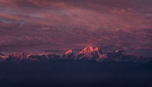 Zonsondergang Himalaya roze gloed van Ellis Peeters