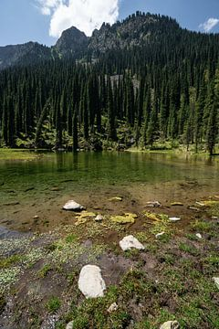 Meer tussen de bergen in Kirgizië van Mickéle Godderis