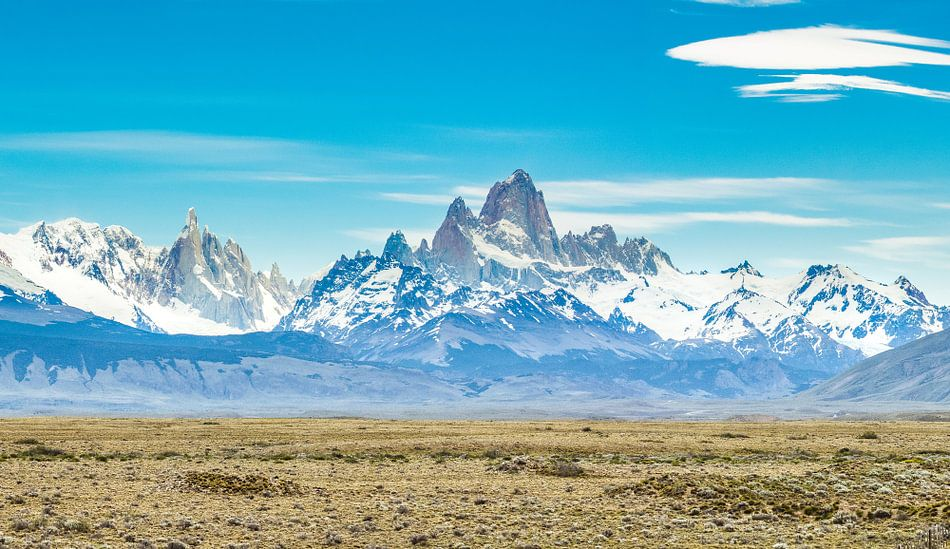 Bergen van Patagonië van Ronne Vinkx