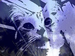Kattenkunst - Kelly 2 van