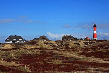 Vuurtoren Hörnum en huizen (Sylt)